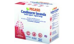Pegaso Lavanda - 4FL