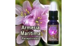 ESENCIAS TRIUNIDAD: ARMERÍA MARÍTIMA, 15 ML.