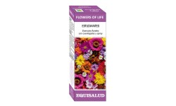 FLOWERS OF LIFE ESTUDIANTES, 15 ml.